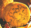 Stilton Cheese Leicestershire